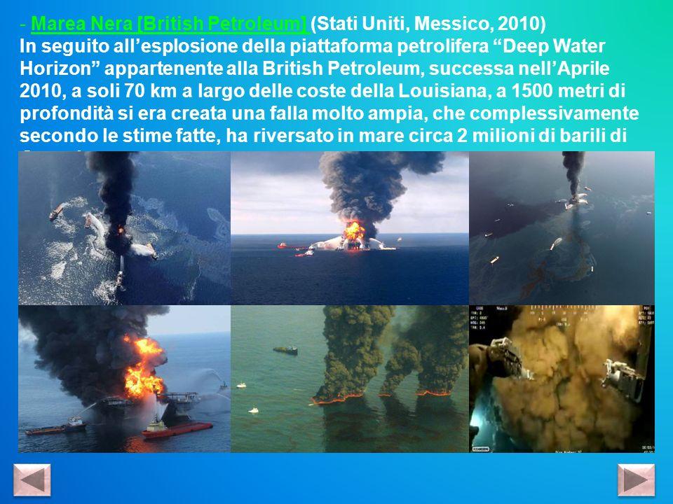 Marea Nera [British Petroleum] (Stati Uniti, Messico, 2010)